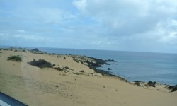 Fuertaventura- Dana and Wild-1