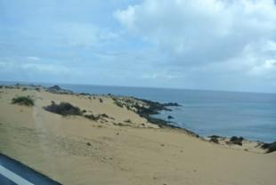 Fuertaventura- Dana and Wild-1