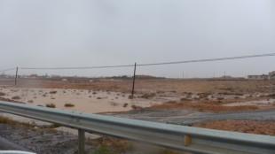 Fuertaventura - Dana and Wild-4