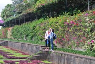 Jardim Botanico - Madeira - Dana and Wild - 3