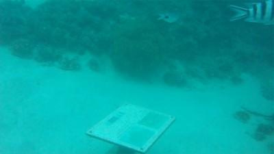 Ilot des deux cocos info table under sea